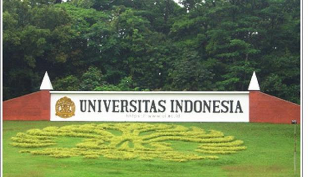 Prodi Profesi Insinyur UI, Jalur Akademik Pertama di Indonesia