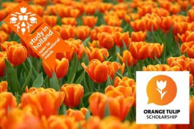 Orange Tulip Scholarship 2019 untuk Program S1 dan S2