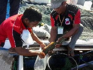 Pemerintah Siapkan Pendidikan SDM Kelautan dan Perikanan Berkualitas